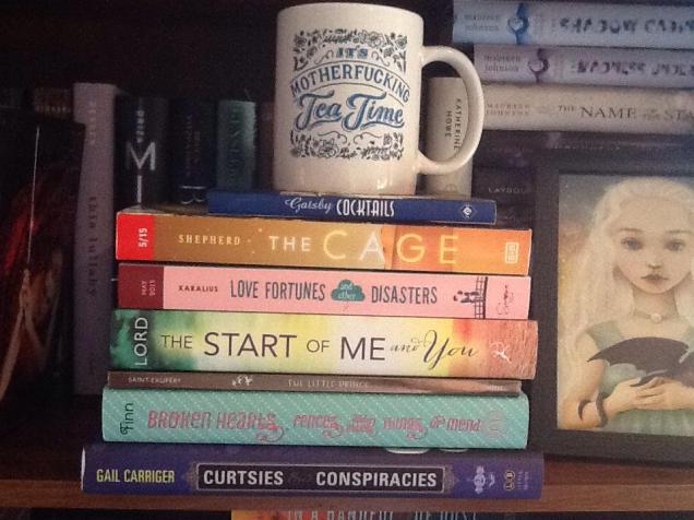 book shelf pic