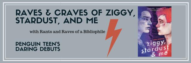 Ziggy banner