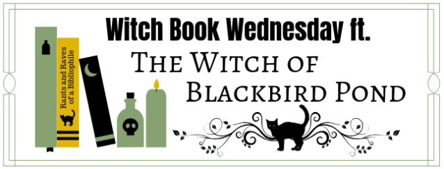 the witch of black bird pond banner
